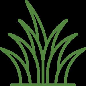 zelenezahrady_travnik